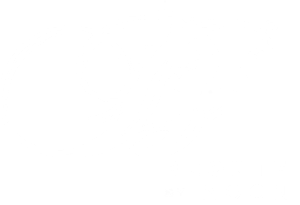 Bronte by Moon British Wool Throws